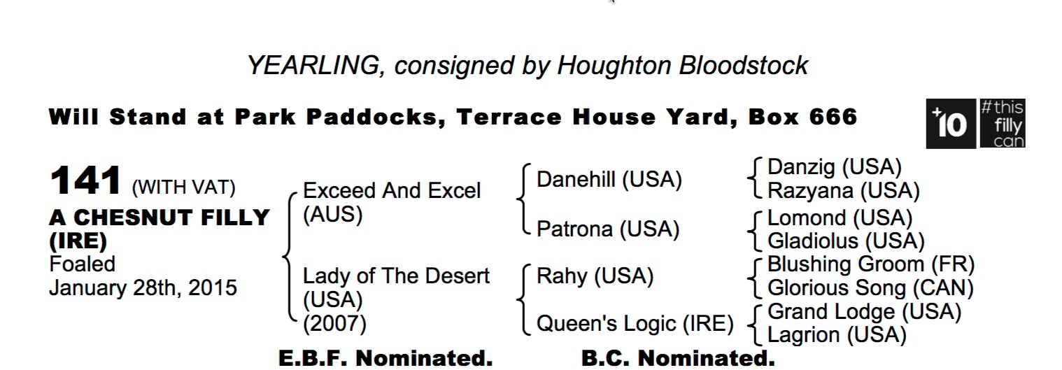 Lot 141 - Exceed And Excel (AUS) / Lady of The Desert (USA) Ch.F.